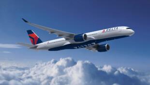 Delta passenger allegedly hits flight attendant